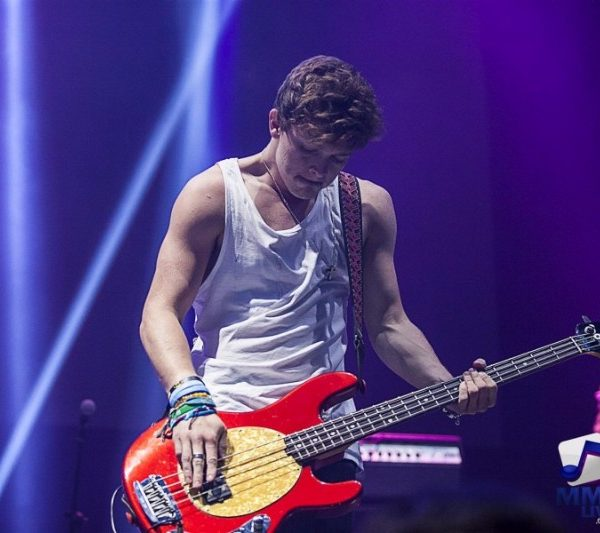 The VAMPS 2015 (9)