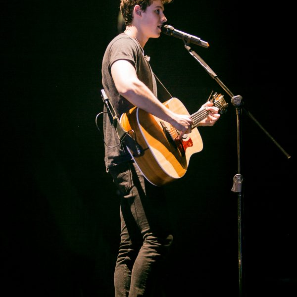 shawn Mendes 2017 (5)